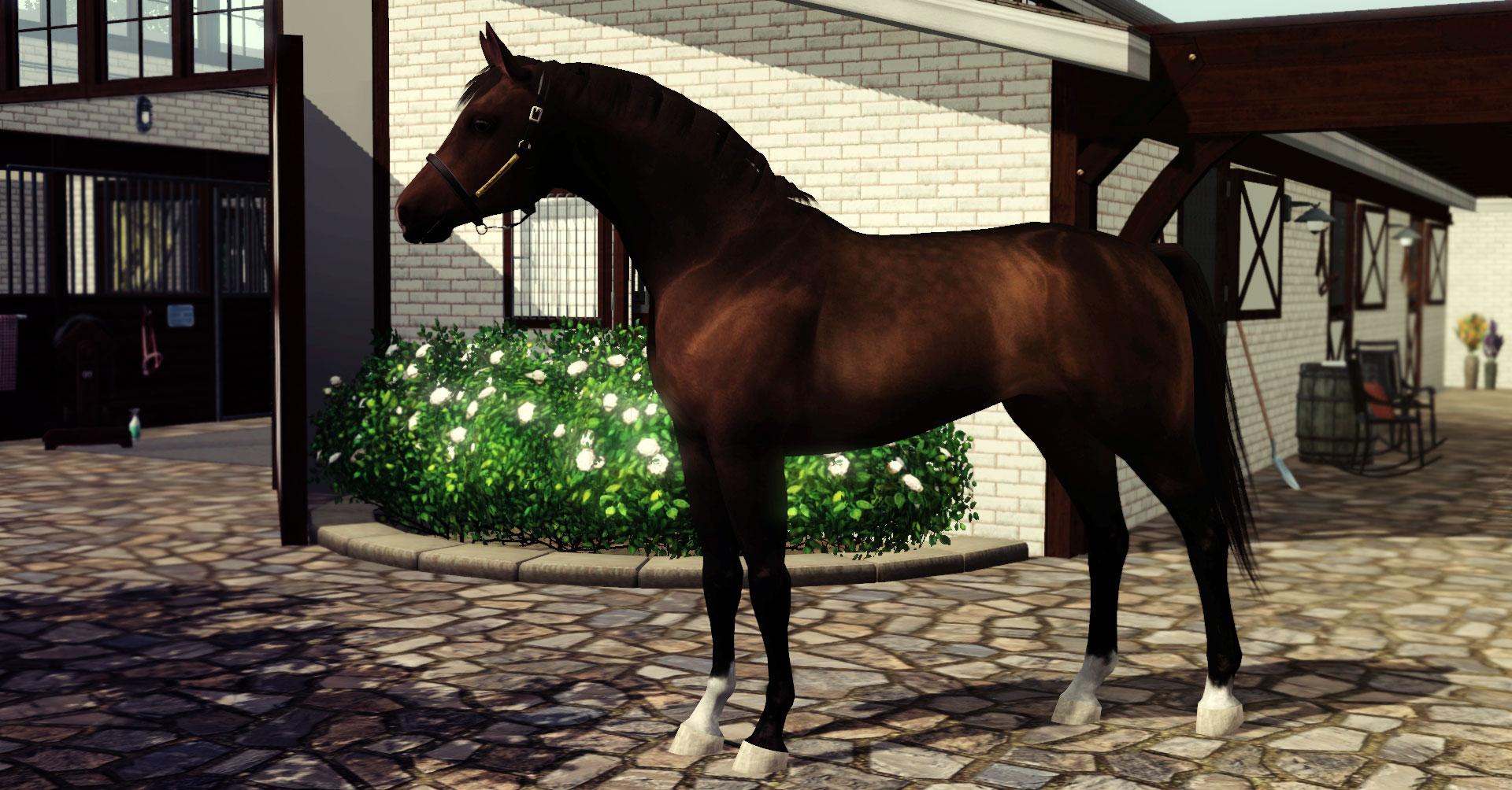 Equus-sims:: view topic julie's album | wakefield | pg. 23.